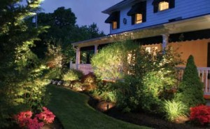 landscape-garden-solar-electric-lighting