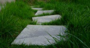 stepping-stones-garden-accessories-landscape