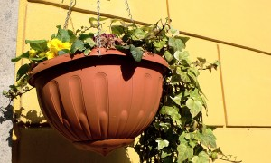 hanging-flower-basket-pot-garden