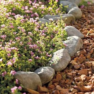 Landscape Garden Edging Borders Options for Edging a Flower Bed
