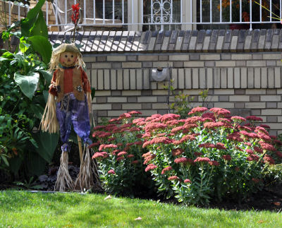 home-curb-appeal-mini-miniature-scarecrow-autumn-joy-sedum-garden-photo-photos